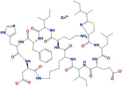 bacitracin zinc structure